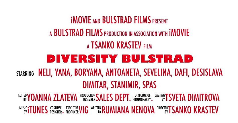 2nd place video of the VIG insurance company Bulstrad in the video competition on diversity